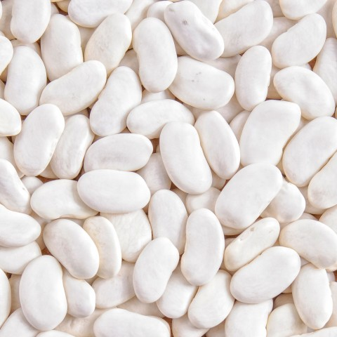 White Kidney Beans, Caliber is 8
