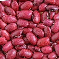 Tomato/Red Beans
